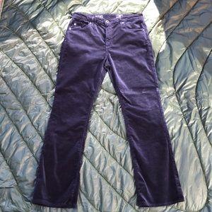 AG Jodi velvet pants